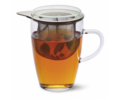 TEA FOR ONE - TEEGLAS LYRA MIT METALLSIEB UND GLASDECKEL